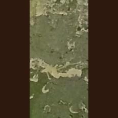 Свечка Рустик Цилиндр 3 фитиля темно-тепло зеленый (D-15 х 15)
